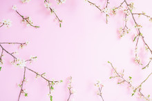 Floral Frame With White Flowers On Pastel Pink Background. Flat Lay