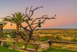 Fototapeta Sawanna - Luxus Lodge nahe Windhoek Namibia