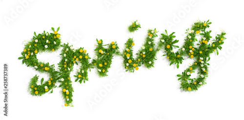 Foto auf Leinwand Lowenzahn word spring made of grass, dandelion and daisy flowers, 3D render