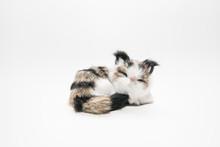The Cute Cat Statue