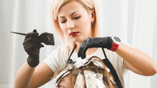 Closeup Of Professional Hairdresser Coloring Hair Of Female Client