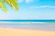 Beautiful Nature Summer Tropical Beach Background