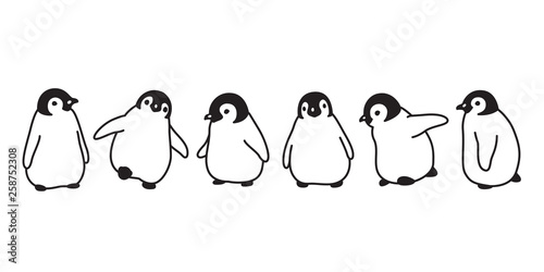 Fotografiet penguin vector icon logo baby cartoon character illustration symbol graphic dood