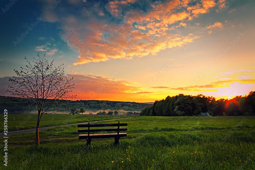 Fototapeta Bank in der Wiese beim Sonnenuntergang