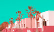 Leinwanddruck Bild - Canary Islands. Plants on pink fashion concept. Pink pastel colours mood. Palm location
