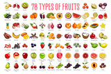 Fruits Icons – A huge set includes 78 types of colorful fruits with names. The icons were drawn in free hand and have thin gray line. Can be used for supermarket categories, for learning, as a poster.