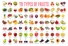 Fruits Icons – A Huge Set In...
