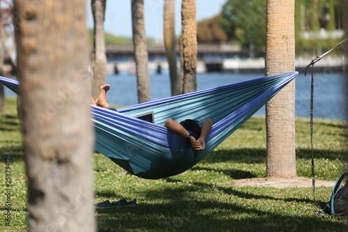 Fotografie, Obraz  Woman sitting in a hammock on her laptop