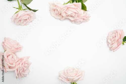 Blush Rose Floral feminine flat lay  background