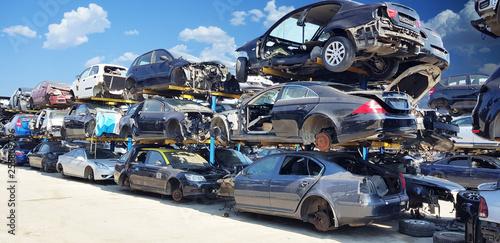 Fototapeta Wrecked vehicles on the junkyard  obraz