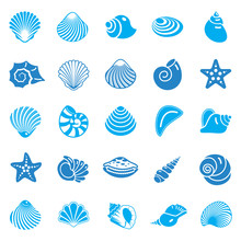 Sea Shell Icons Set Blue On Wh...