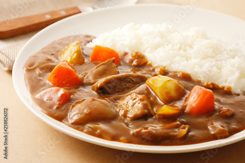 Obraz カレーライス Japanese curry - fototapety do salonu
