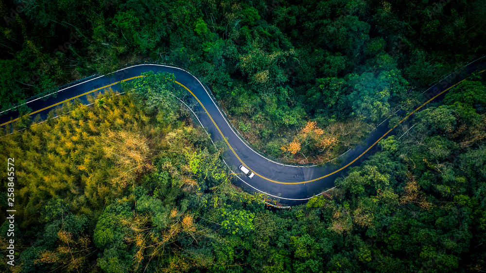 Fototapeta Car in rural road in deep rain forest with green tree forest, Aerial view car in the forest.