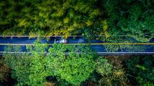 Car In Rural Road In Deep Rain...