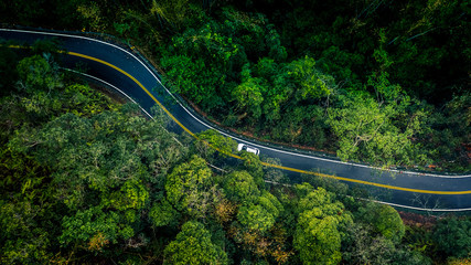 Car in rural asphalt road in deep rain forest with green tree forest, Aerial view car in the forest view from above background.