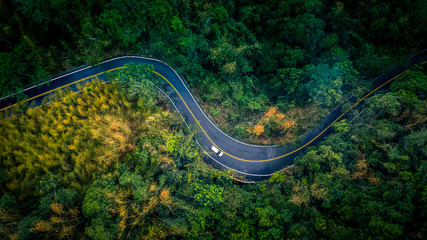 Car in rural road in deep rain forest with green tree forest view from above, Aerial view car in the forest on asphalt road background.
