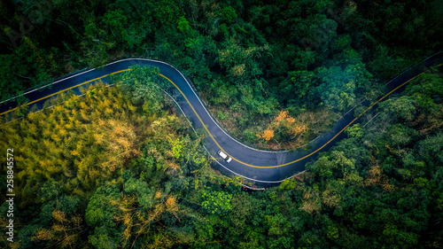Fototapeta Car in rural road in deep rain forest with green tree forest view from above, Aerial view car in the forest on asphalt road background. obraz