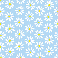 Minimal Cute Hand-painted Daisies On Sky Blue Background Vector Seamless Patters. Spring Summer Floral Print