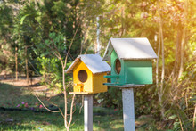 Green And Yellow Wooden Birdhouse On Post In The Garden On Summer Or Spring Sunshine With Natural Green Leaves Background