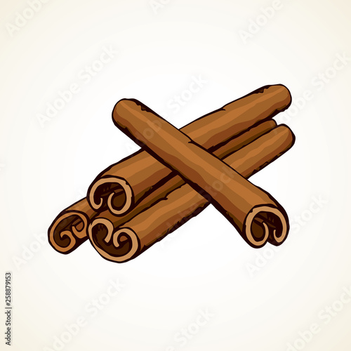 Fotomural Cinnamon. Vector drawing