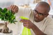 happy man taking care of bonsai plant