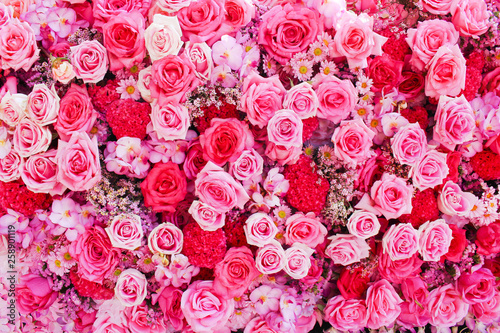 Fotobehang Bloemen Colorful multicolored ornamental of beautiful pink and red roses blooming patterns group on wall for background