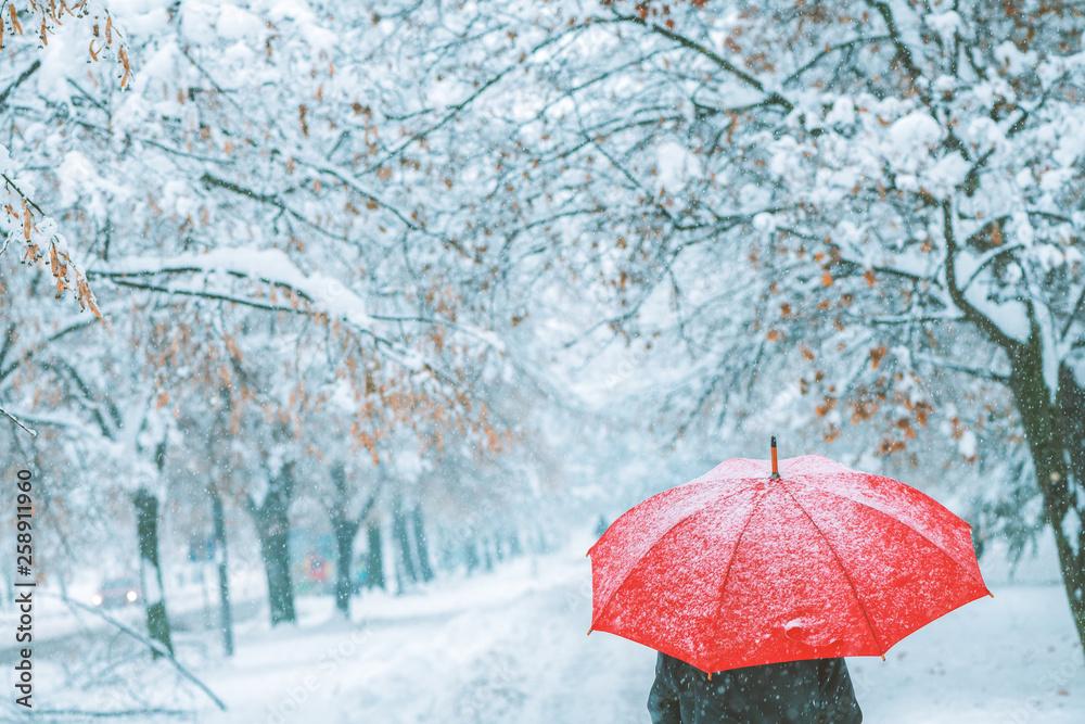 Fototapeta Woman under red umbrella walking in winter snow