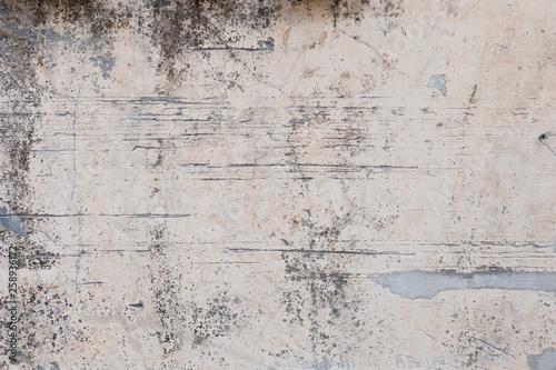 Fototapeta Loft-style plaster walls, gray, white, empty space used as wallpaper. Popular in home design or interior design. with copy spaces. obraz na płótnie