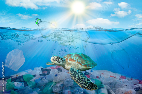 Poster Tortue Plastic pollution in ocean environmental problem. Turtles can eat plastic bags mistaking them for jellyfish. dirty water concept