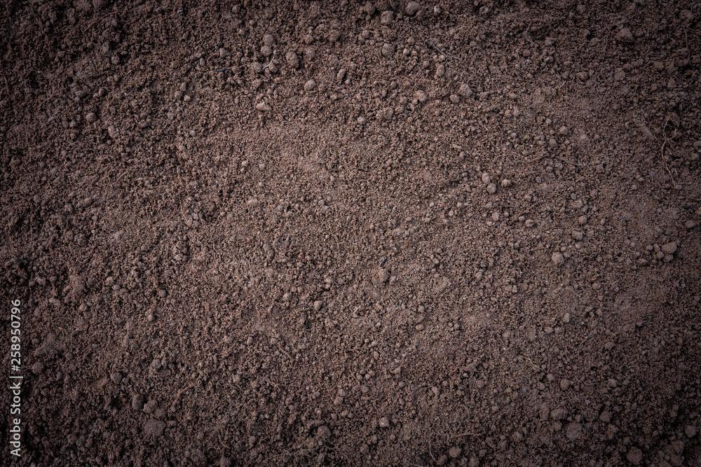 Fototapety, obrazy: Soil background.