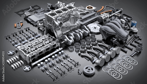 Canvastavla  Car engine disassembled. many parts.
