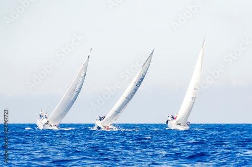 Tela Tres barcos veleros en regata