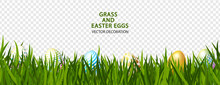 Green Grass With Easter Eggs O...