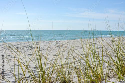 Tropical white sand beach on the gulf coast of Florida near St. Petersburg