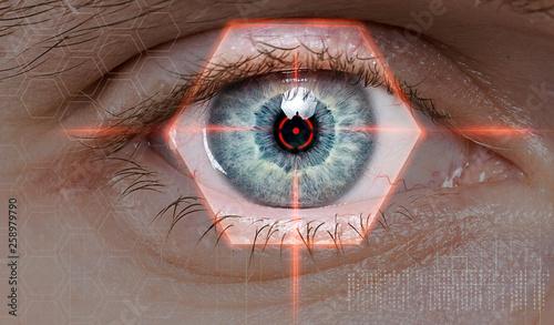 Cuadros en Lienzo biometric retina scan or vision test