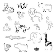 Big Outline Handdrawn Collection Of Tropical Animals. Simple Cute Illustration For Design T Shirts, Posters, Cards. Vector Illustration