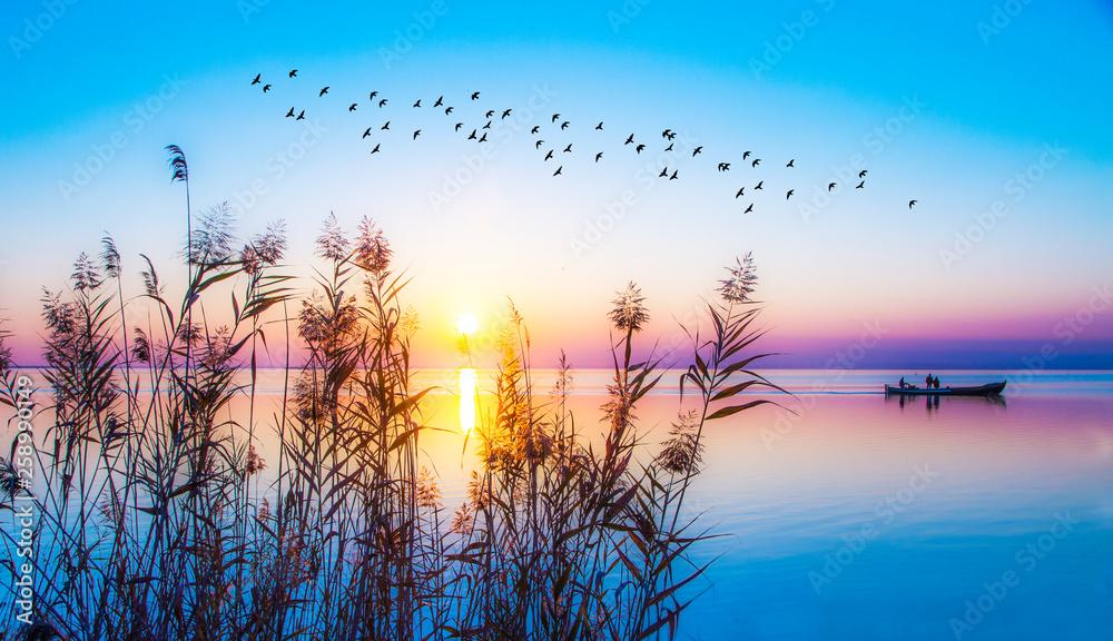 Fototapeta los colores del atardecer en la naturaleza