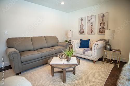 Fototapeta Interior Living Room  obraz na płótnie