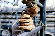 Close Up Of Work Gloves On Hands Of Person Fencing On The Farm.