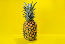 Raw Pineapple On Colorful Background