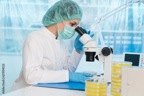 Fotografia  Woman scientist analyzing Petri dishes in the laboratory-