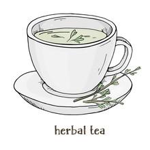 Cup Of Herbal Tea. Vector Illu...