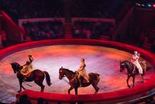 Horses In The Circus. Speech H...