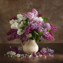 Still Life Lilac Flowers In A Vase On The Table