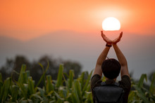 Asian Man In Corn Field Raisin...