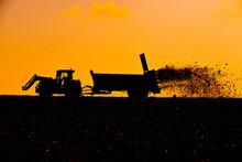 Culture Agriculture Epandage Fumier Fertilisation Planete