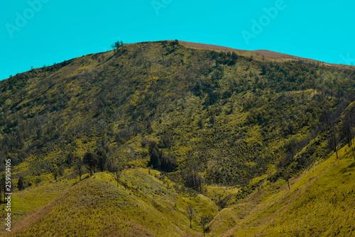 Fotografía  Scenic Green grass field view of rolling countryside green farm fields