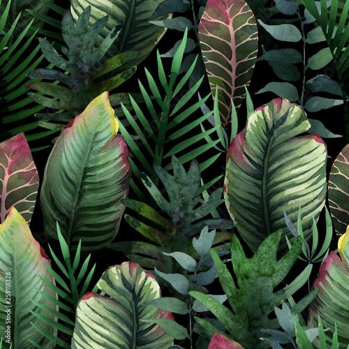 akwarela-bezszwowe-wzor-tropikalnej-dloni-i-lisci-na-ciemno