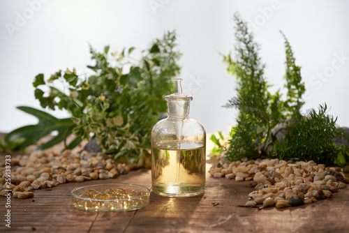 Fotografía  Scientist with natural drug research, Natural organic botany and scientific glassware, Alternative green herb medicine, Natural skin care beauty products, Research and development concept