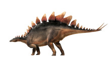 Stegosaurus, Was A Thyreophoran Dinosaur.  An Herbivore, It Is One Of The Best Known Dinosaurs Of The Jurassic Period. Here, A Grey And Brown One Is In Profile On A White Background. 3D Rendering.